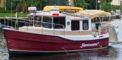 Shearwater IV